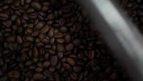 Frisch Röstkaffeebohnen, die in eine spinnende Kühlvorrichtung fallen stock footage