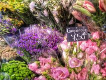 Frisch Schnittblumen für Verkauf Stockbilder