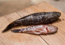 Frisch starben Fische für das Kochen des Lebensmittels auf hölzernem Hiebbrett Stockbild