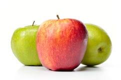 Frische Äpfel lizenzfreie stockfotos