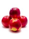 Frische Äpfel Stockfotos