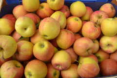 Frische Äpfel Stockfoto