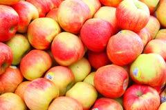 Frische Äpfel Lizenzfreies Stockbild