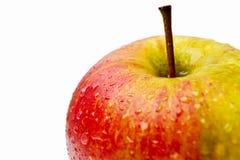 Frische Äpfel auf einem weißen Hintergrund Stockbilder