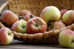 Frische Äpfel in einem Korb lizenzfreies stockfoto