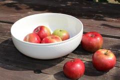 Frische Äpfel in einer Schüssel Abschluss oben Stockfotografie