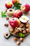 Frische Äpfel, Haselnüsse und Zimt stockfotografie