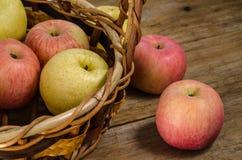 Frische Äpfel im Korb Stockbild