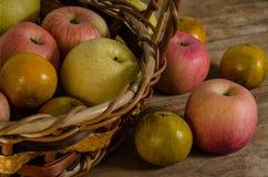 Frische Äpfel im Korb Lizenzfreie Stockfotografie