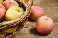 Frische Äpfel im Korb Lizenzfreie Stockbilder