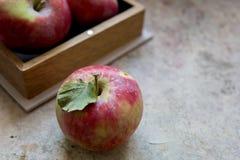 Frische Äpfel mit dem Blütenstaub, Teil Äpfel im Kasten Stockfoto
