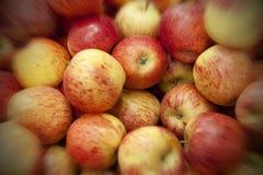 Frische Äpfel verbreiteten heraus eine gleichmäßige Schicht als Hintergrund lizenzfreies stockbild
