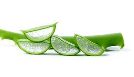 Frische Aloevera-Blätter auf weißem Hintergrund Stockfoto