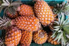 Frische Ananas im Korb Lizenzfreie Stockbilder