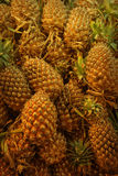 Frische Ananas im Markt Stockfoto