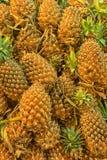Frische Ananas im Markt Stockfotografie