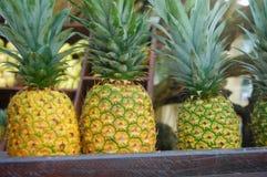 Frische Ananas-Stange Stockfotos