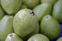 Frische Apfelguaven für Verkauf im Freiluftmarkt Lizenzfreie Stockbilder