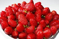 Frische appetitanregende Erdbeere Stockbilder