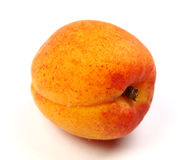 Frische Aprikose Stockfotografie