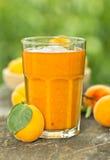 Frische Aprikose und Saft Lizenzfreies Stockbild