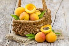 Frische Aprikosen in einem Korb Stockfotografie