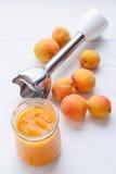Frische Aprikosen und Aprikosenpüree maded durch Mischmaschine Lizenzfreies Stockfoto