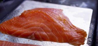 Frische atlantische Lachse stock video