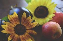 Frische ausgewählte Äpfel, Aubergine und Sonnenblume schossen in Puerto Rico Biologische Landwirtschaft, neue Landwirtmarkt-Falle lizenzfreie stockfotos