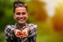 Frische ausgewählte aus dem wirklichem Leben Erdbeeren lizenzfreie stockfotografie