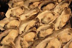 Frische Austern auf Eis Lizenzfreie Stockfotos