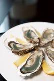 Frische Austern auf Platte mit Zitrone Stockfotos