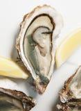 Frische Austern auf Platte mit Zitrone Stockbild