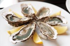 Frische Austern auf Platte mit Zitrone Lizenzfreies Stockfoto