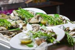 Frische Austern in einer weißen Platte Stockfotografie