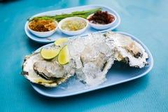 Frische Austern schmackhaft Lizenzfreie Stockbilder