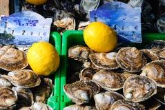 Frische Austern von Cancale Stockfoto
