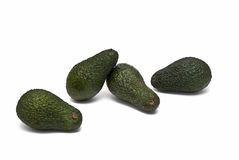 Frische Avocados. Stockfotografie