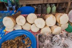Frische Bambusschosse für Verkauf am lokalen Lebensmittelmarkt bei Udornthani Lizenzfreie Stockfotos