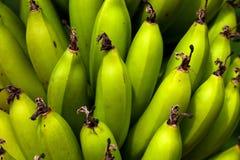 Frische Banane lizenzfreies stockbild