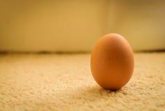 Frische Bauernhof-Huhn-Eier Stockbild