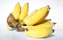 Frische bebaute reife Produkte der Banane, Thailand Lizenzfreie Stockfotografie