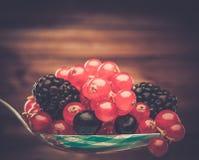 Frische Beeren auf einem Löffel Lizenzfreie Stockfotografie