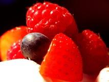 Frische Beeren in der Vanillecreme Stockfotos