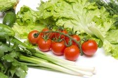Frische Bestandteile für Salat Konzept der Vorbereitung für das Kochen Eine Tomate, eine Gurke, Salat Rohe Tomaten, Kopfsalatblät stockfotos