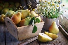 Frische Birnen in einer hölzernen Kiste und in einem Blumenstrauß von Gänseblümchen auf Holztisch Stockbild