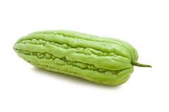 Frische bittere Melone Lizenzfreie Stockfotos