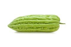 Frische bittere Melone Lizenzfreie Stockfotografie