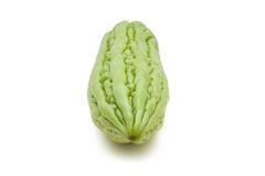 Frische bittere Melone Lizenzfreies Stockbild