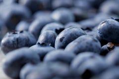 Frische Blaubeeren Stockfotos